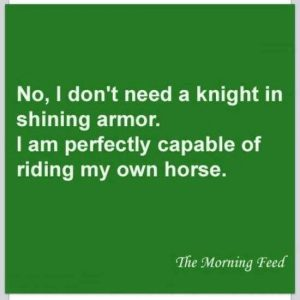 no knight in shining armor