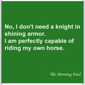 no knight in shining armor